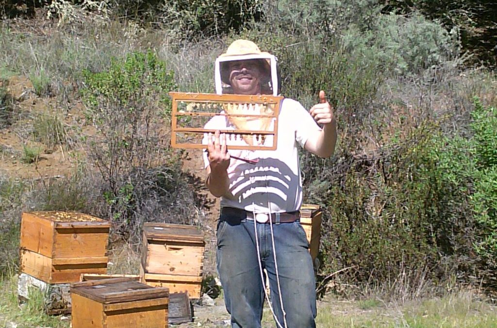 WY Bee College: Intro to Queen Breeding & Rearing with M. Kirby of ZQB MidMarch 2018